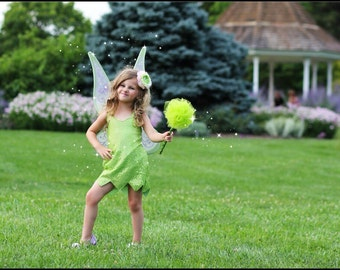 Tinkerbell girl costume party dress Tinkerbell birthday