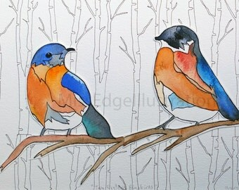 "Original Illustration ""Two Eastern Bluebirds"""