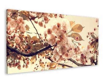 Apple Tree Blossom - Framed Nature Wall Art Canvas Print // 4 Sizes - medium to large // High Quality // Free, Fast & Safe Shipping