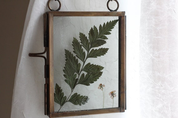 Foraged pressed leaves and flowers suncatcher, featuring a fern and peachy flowers.