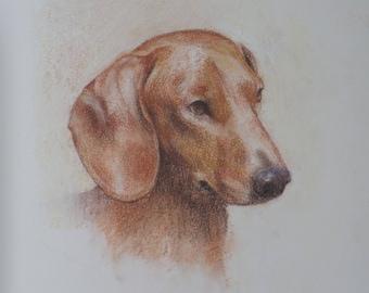 dog art print dachshund art custom dog painting custom pet art dog portrait art print