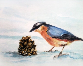 nuthatch in Winter Aquarell