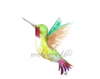 Rainbow Hummingbird Print