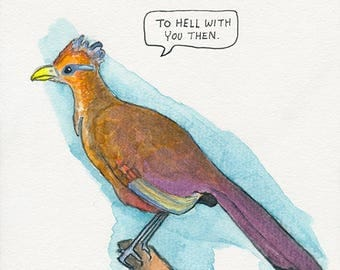 The Rufous-Vented Ground Cuckoo