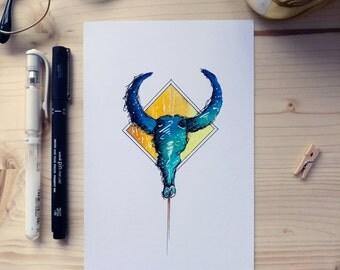 Illustration of a Buffalo skull.