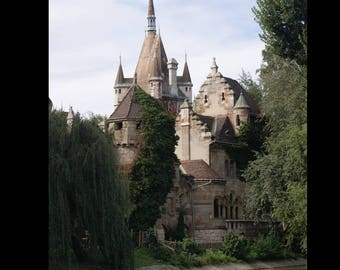 Budapest, Hungary Vajdahunyad Castle Print