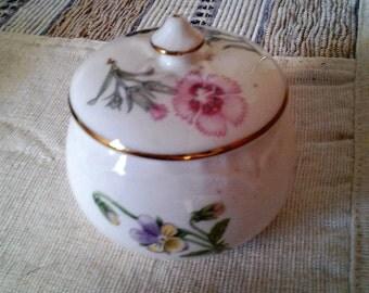 "Vintage Aynesley  Fine Bone China ""Wild Tudor"" Pot"