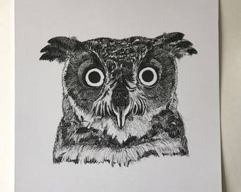 Twit Twoo the Owl Illustrated Print