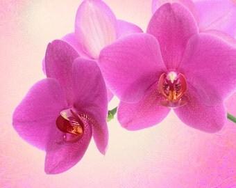 """Ceramic Tile Magnet 3"""" x 3"""" Pink Flower"""
