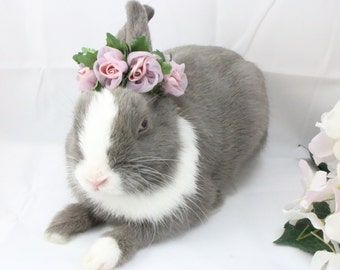 Rose Pink Satin Flower crown / Bunny crown / Flower crown for rabbits and small pets