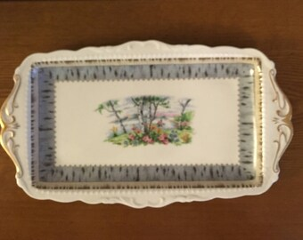 "Mid Century Royal Albert ""Silver Birch"" Series Serving Tray- Royal Albert Bone China Platter"