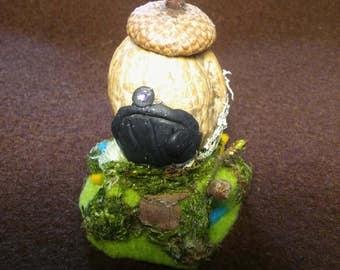 Mini walnut fairy gnome house
