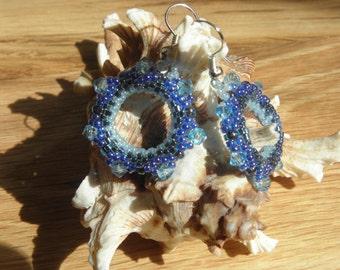 Bling Ring Earrings