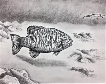 Small mouth BASS, smallmouth bass PRINT