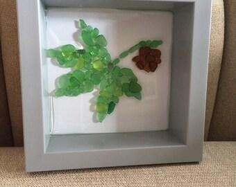 Buckeye with leaf