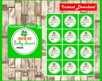 St. Patrick's Day toppers instant download , Printable you're my lucky charm tags, St Patrick's Day gift tags