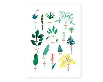 Poster illustration HERBARIUM