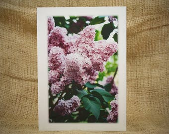 Photo Greeting Cards, Blank Greeting Cards, Handmade Greeting Cards, Lilacs Card, Lilacs Photo, Flower Photo, Canvas Print, Purple Flower