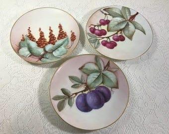 Antique Thomas Sevres Bavaria Fruit Plates , Hand Painted , Plum , Cherries, Decorative Cabinet Plates , 6 3/4 inches , Floral