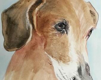 Dog Portrait, Custom Pet Portrait, Pet Portrait dog Portrait Custom, personalized pet, custom cat portrait, cat portrait