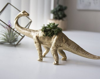 PlantaSaurus - The Herbivore Dinosaur