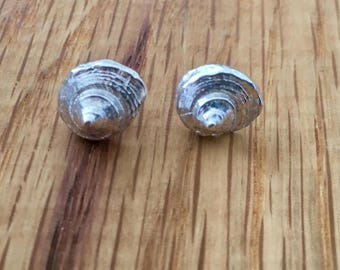Silver Shell stud earrings, bridesmaid gift, bride gift, wedding jewellery, his and hers, silver, shell, studs, Dorset, seashell, earrings