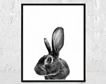 Black and White Baby Animal Print, Rabbit Print, Woodlands Nursery Art, Rabbit Wall Decor, Digital Download
