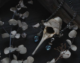 Danse macabre amulet: real bone necklace,skull, pagan jewelry,wicca,tribal,memento mori,rustic,wiccan jewelry,occult,ancient,apocalyptic