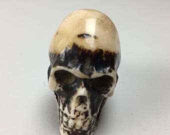Brown Resin SKULL KNOB with cream detail - Home decor drawer pull