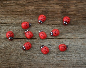Fairy Garden Ladybugs 10 piece fairy garden decoration adhesive back terrarium decor miniature Ladybugs