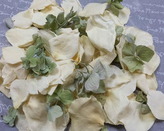 "100% Real Freeze Dried White Rose and Green Hydrangea Petals (5 cups) ""Irish At Heart"""