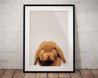 Nursery Print Bunny, Rabbit Print Art, Woodland Bunny Art, Nursery Bunny Art, Woodland Bunny Print, Nursery Rabbit Print, Rabbit Print