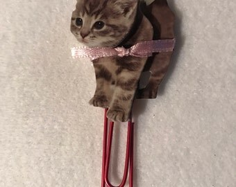 Grey kitten with bow planner clip