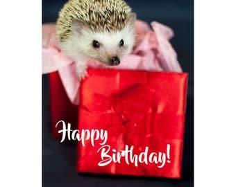 hedgehog Happy Birthday card