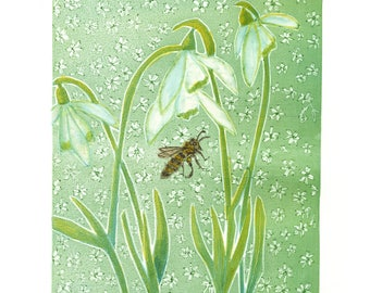 Floral Visitors Series - Galanthus Nivalis