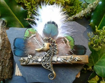 For hippocampus and natural feather hair Barrette
