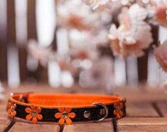 "soft feel - collar leather ""Flowers"" in 9 colors neck size 21-26 cm for very small - small dogs black-ORANGE article 582"