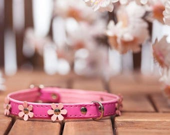 "soft feel - collar leather ""Flowers"" in 9 colors neck size 21-26 cm for very small - small dogs PINK-ROSA article 582"