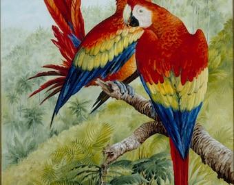 Scarlet Splendour - Print of Original Oil Painting - Tropical Parrot Scene