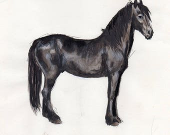 The Frisian - drawing of original and unique horse Stallion