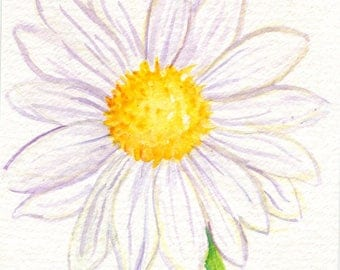 Shasta Daisy Watercolor Painting original 4 x 6 daisy flowers artwork, original watercolor painting of daisy, watercolor flowers