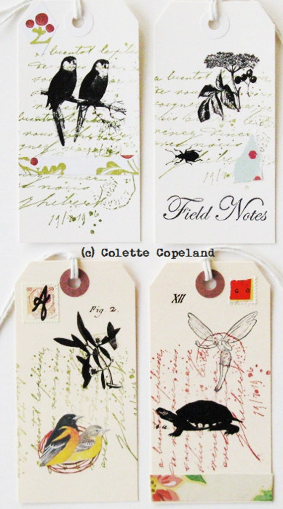 Original tag art, set of 4, nature study, birds, animals, plants