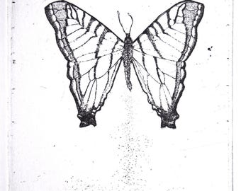 Butterfly Original Etching and Engraving