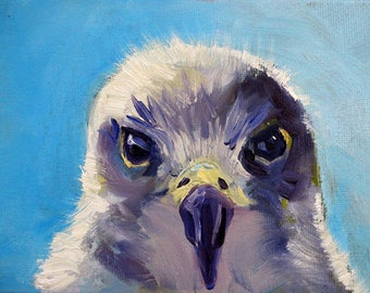 Bird Portrait, Small 5x7, Oil Painting, Wild Creature, Blue Gray, Wall Decor, Nature, Hawk Eyes, White Feathers, Woodland Forest, Animal