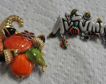 Beautiful Autumn and Fall Brooches