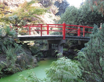 Giclee Print Multiple sizes Red Bridge at the Japanese Gardens by Rebecca Salcedo FFAW Free Shipping