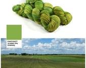 Prairie - Letter Plus - Speckled Green Yarn - Pantone 2017 - Greenery Yarn - Fingering Weight Merino/Nylon Blend 400 Yards