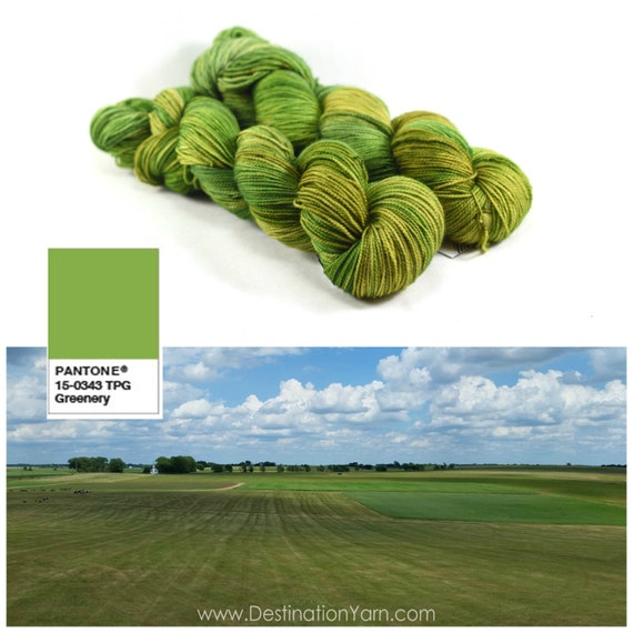 Prairie - Letter Plus - Speckled Green Yarn - Pantone 2017 - Greenery Yarn - Fingering Weight Merino/Nylon Blend 400 Yards