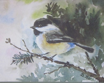Chickadee and Evergreens, Set os 6  Notecards from Original Watercolor Painting