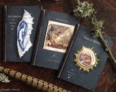 Magical Nature Notebooks x3. A6/C6 size/ Hare /Fox/ Bee/ 36 Plain Pages By Karen Davis